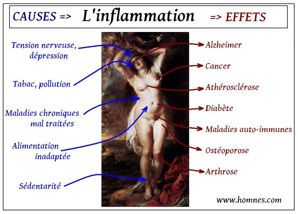 Inflammation (causes & conséquences)