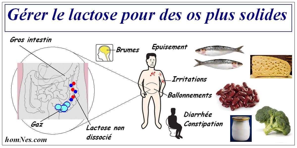 Gérer l'intolérance au lactose Ostéoporose homNes.com