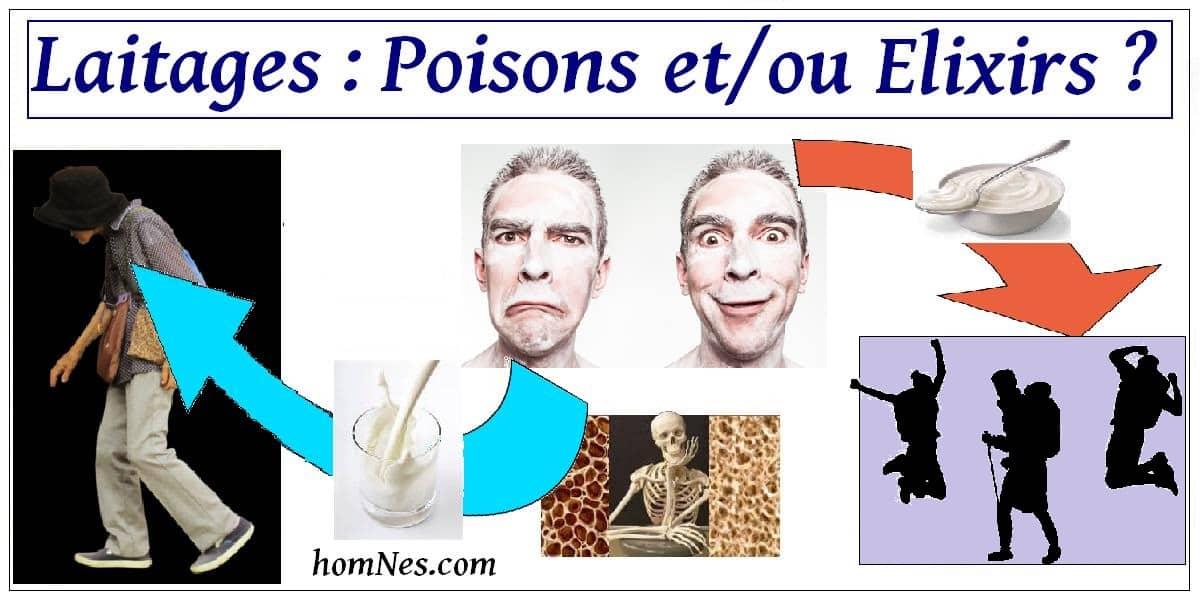 Laitages - Elixir et ou Poison
