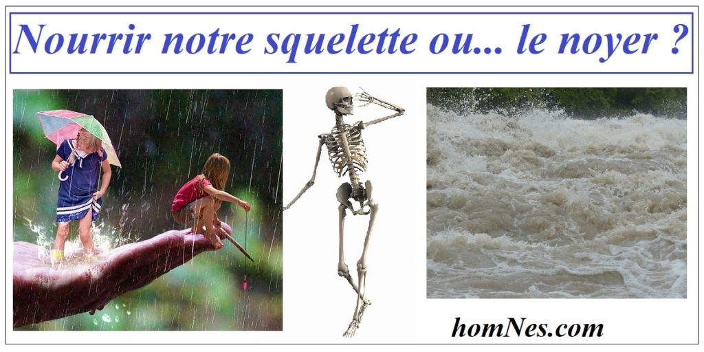 Nourir ou noyer notre squelette - ostéoporose