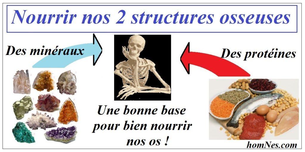 Nourrir nos structures osseuses - ostéoporose