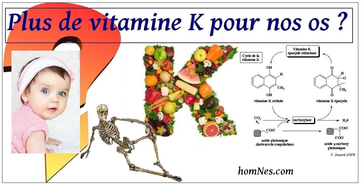 Vitamine K et squelette - homNes.com